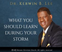 What You Should Learn During Your Storm